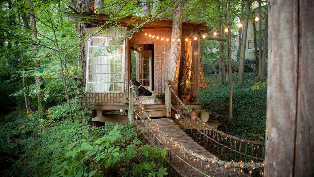 Intown Tree House Rental