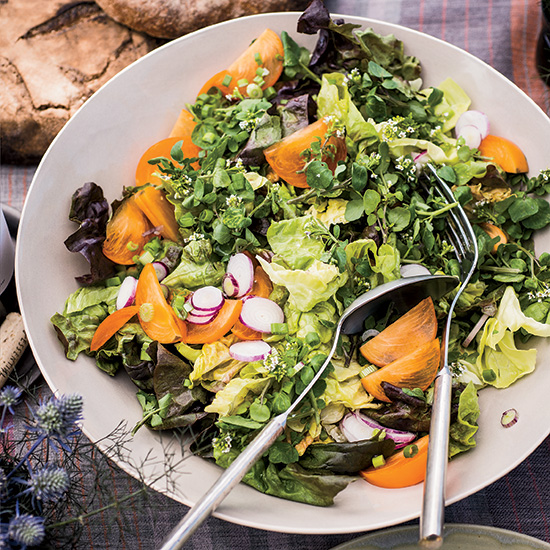 Butter Lettuce Salad with Persimmons and Radishes