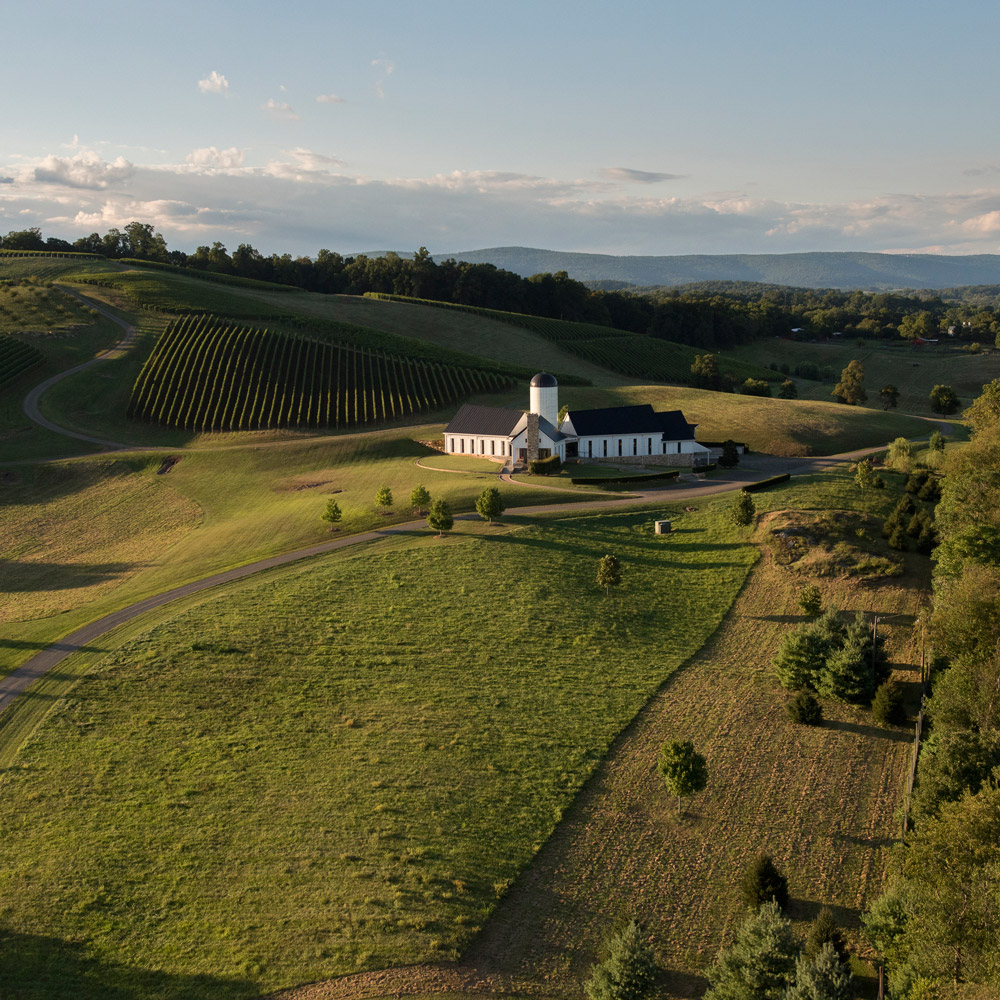 RdV Vineyards