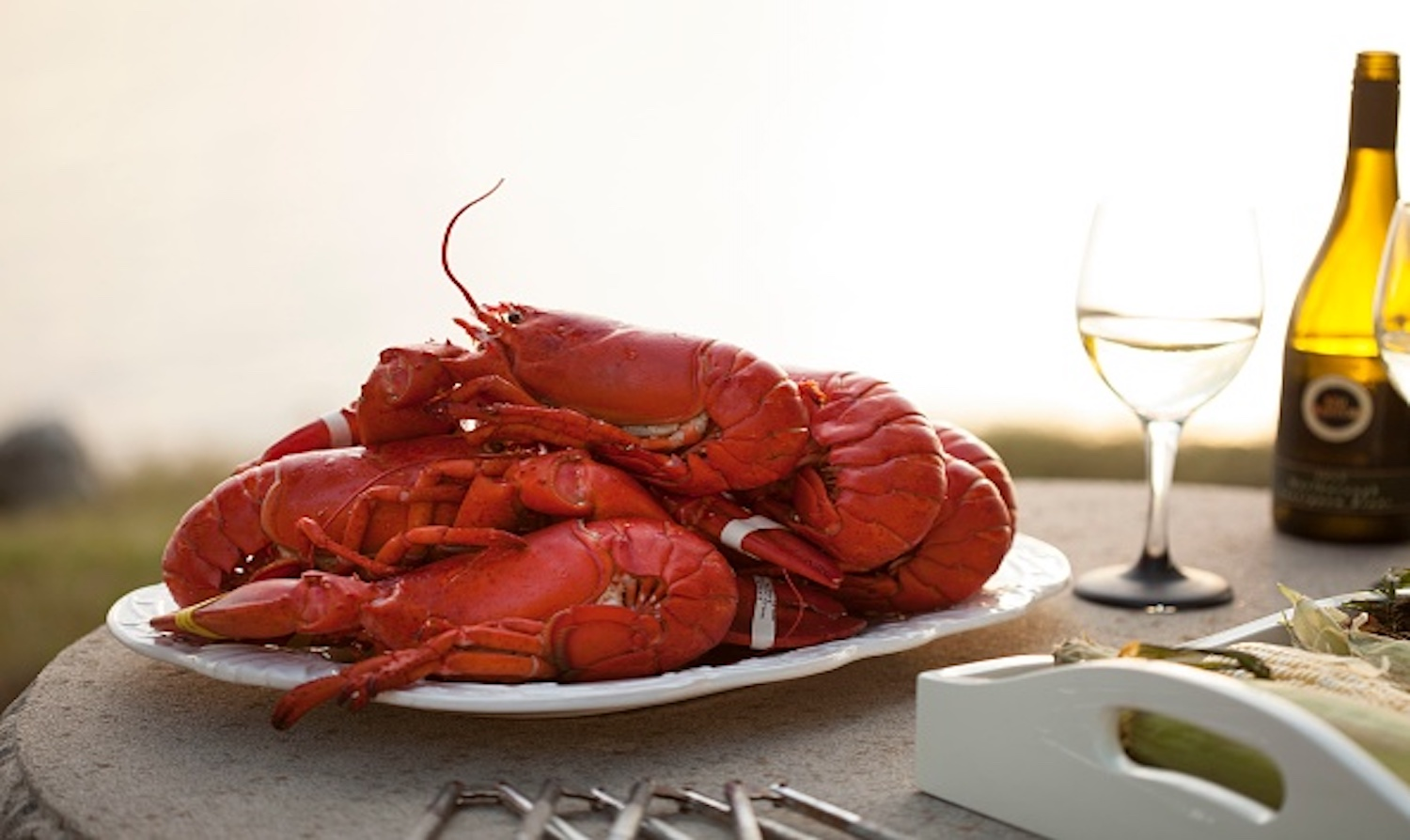 Science of red lobster