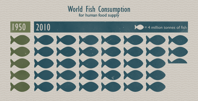 Sustainable Seafood - World Fish Consumption For Human Food Supply