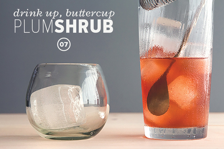 falls-finest-shrubs-Plum-Shrub-Bourbon-Cocktail-720x480-inline.jpg