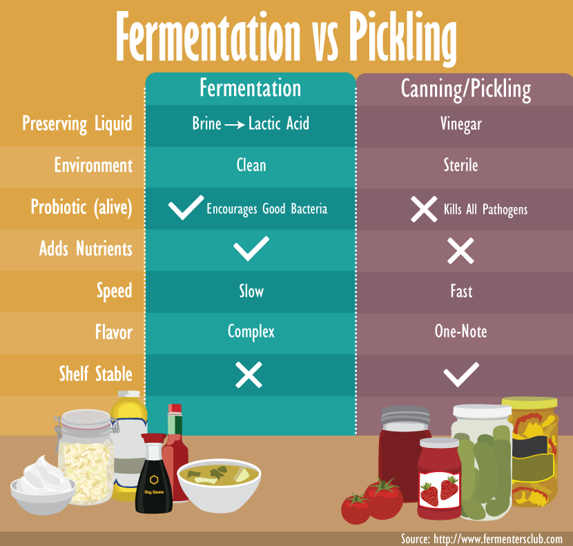 Fermentation vs. Pickling