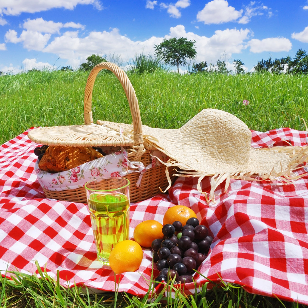FWX 9 ESSENTIAL PIECES OF PICNIC GEAR
