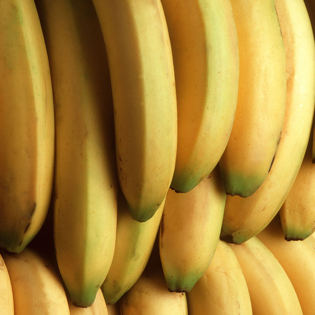 FWX BANANAS IN DANGER OF GOING EXTINCT 1