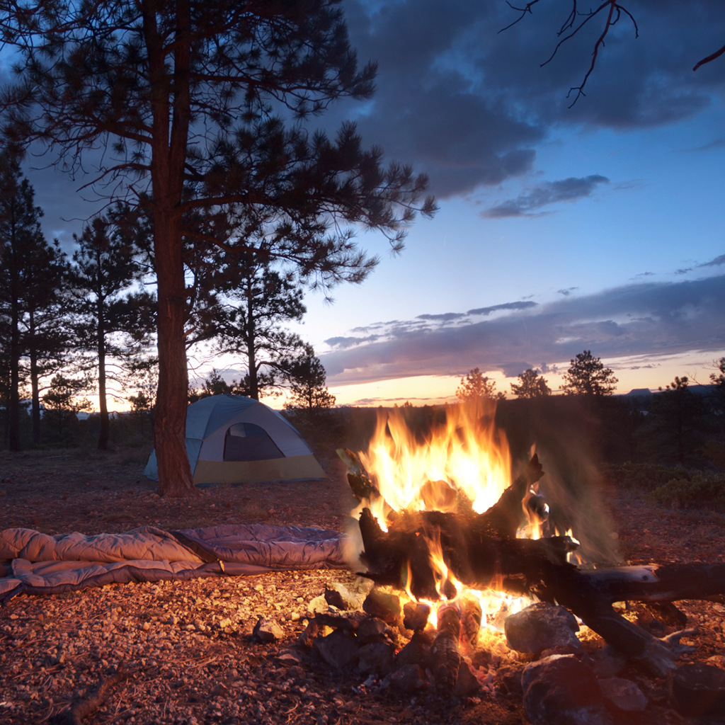 FWX CAMPING