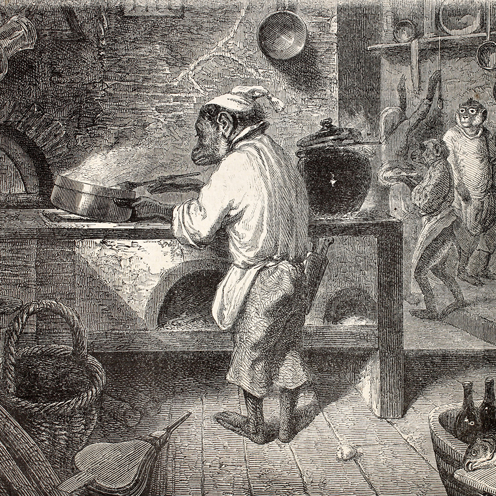 FWX CHIMPS CAN COOK