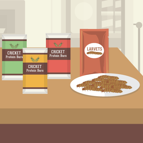 FWX FIX EDIBLE INSECTS HEADER