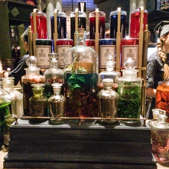 FWX FOOD OF HARRY POTTER ELIXIRS