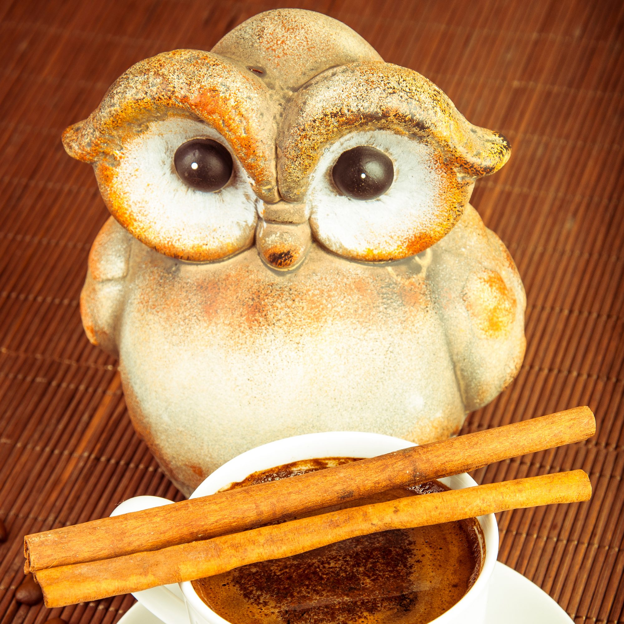 FWX JAPANESE OWL CAFE