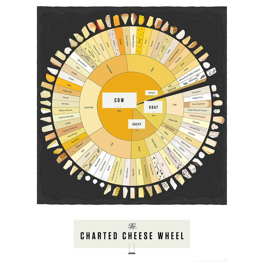 Pop Chart Lab, The Charted Cheese Wheel