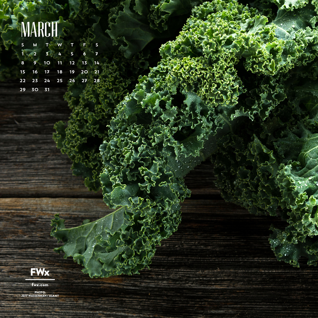 FWX MARCH CALENDAR KALE