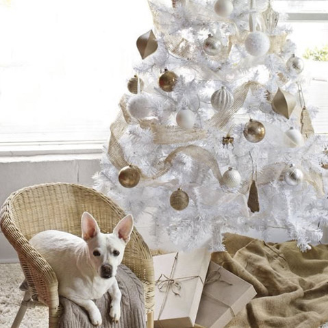Scare Pets Away From The Christmas Tree