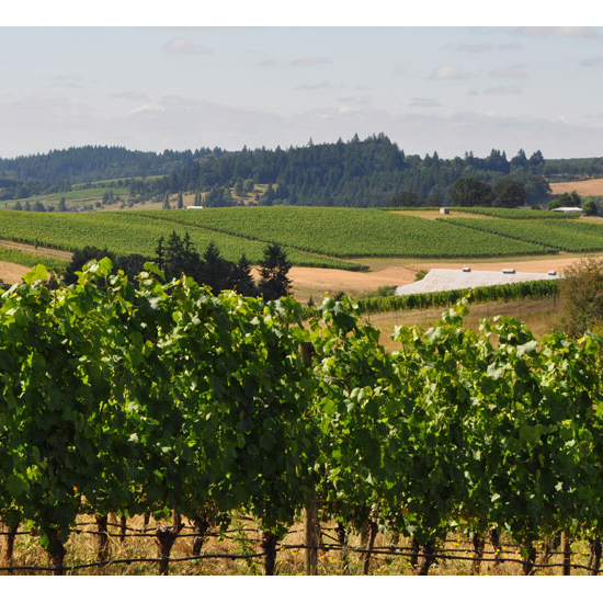 For Wining and Dining: Willamette Valley, Oregon