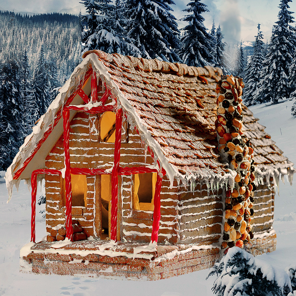 FWX RENT A GINGERBREAD HOUSE CABIN 3