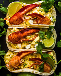 FWX STACKED LOBSTER BREAKFAST TACOS