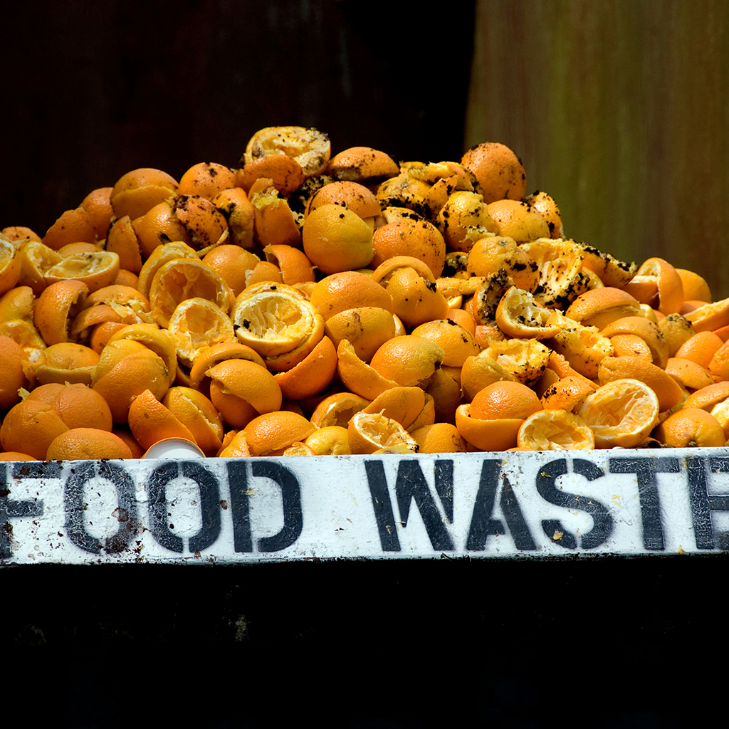 Building Materials from Food Waste