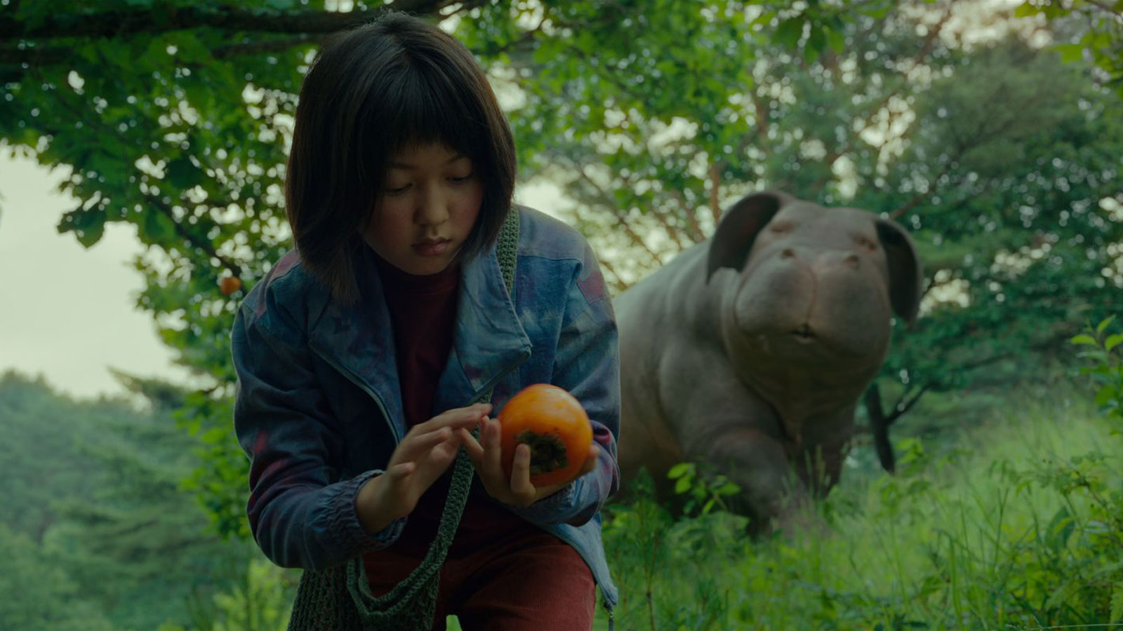 okja-what-to-watch-july-fourth-FT-BLOG0617.jpg