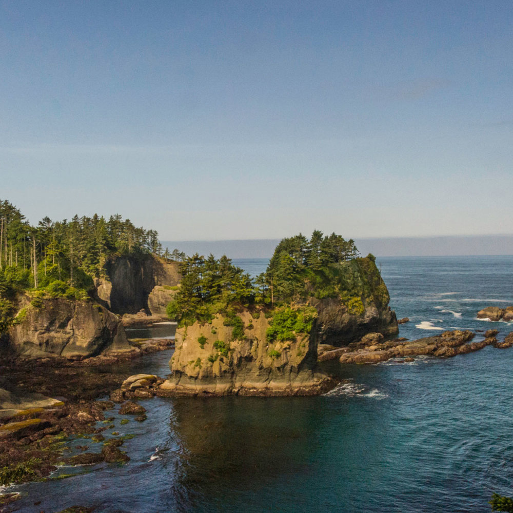 Head as far west as you can get in Olympic National Park