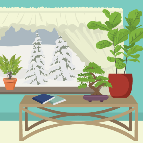 PARTNER FIX GUIDE TO WINTER HOUSEPLANTS FWX