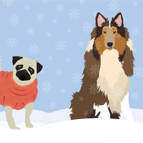 PARTNER FIX WINTER PETS FWX