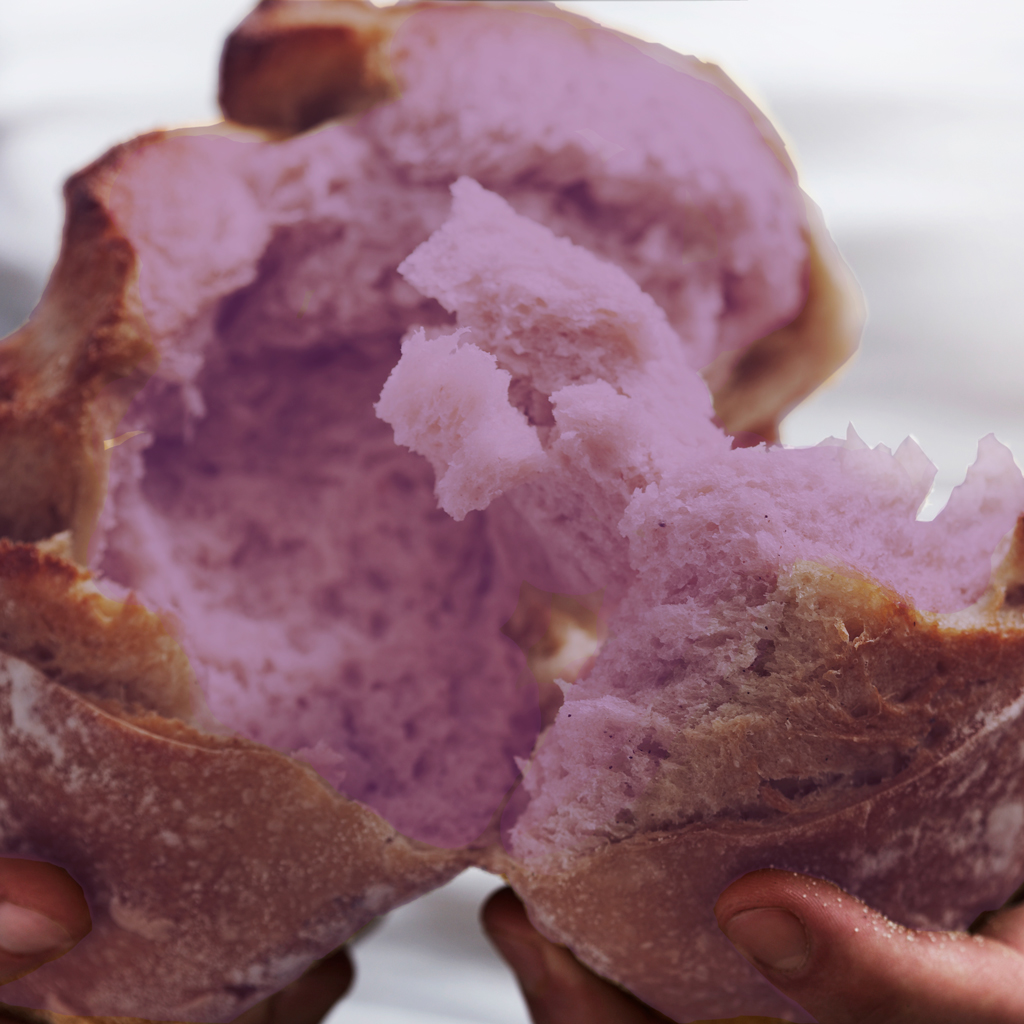 PURPLE BREAD FWX