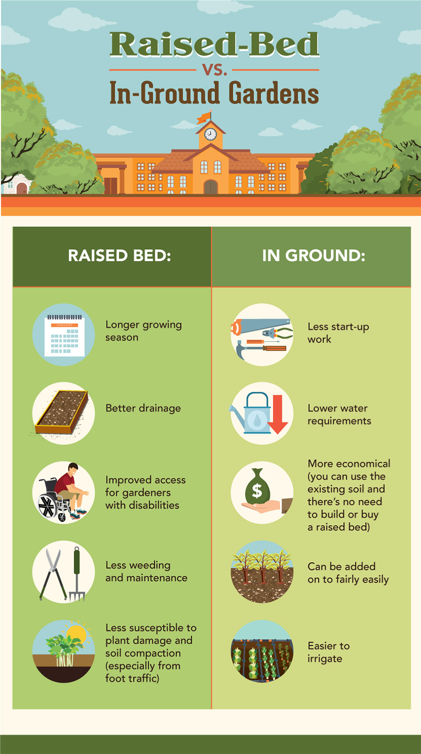 Raised bed gardens vs ground gardens
