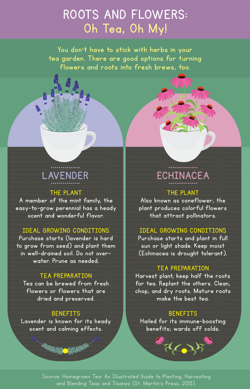 Flowers Used in Tea