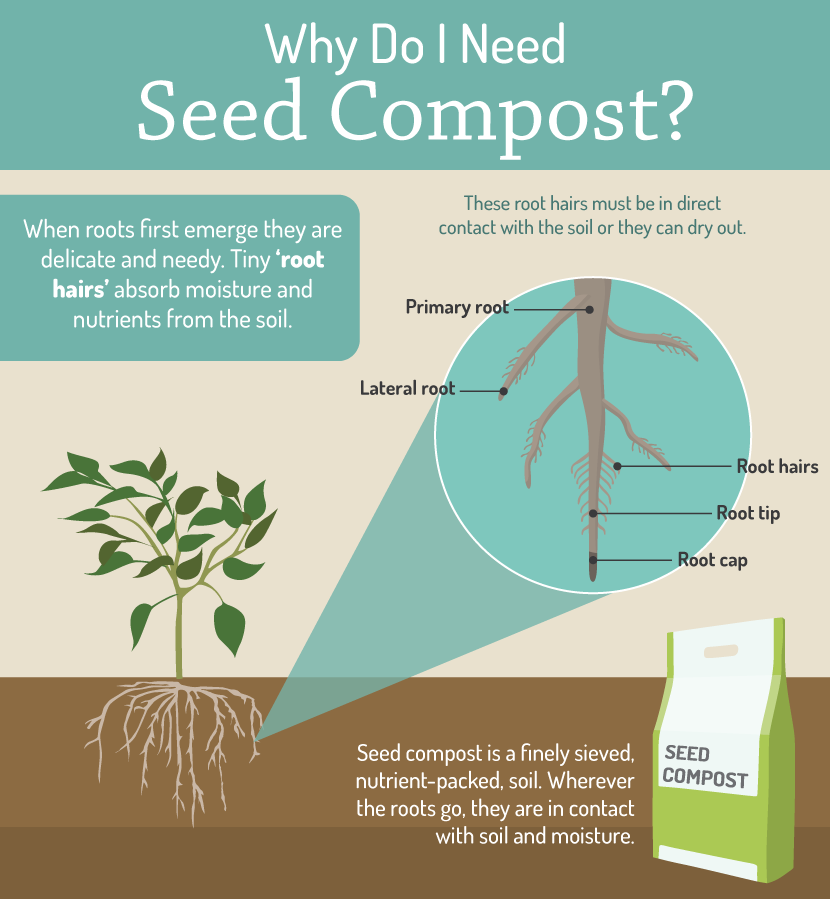 Why compost is important when starting seeds