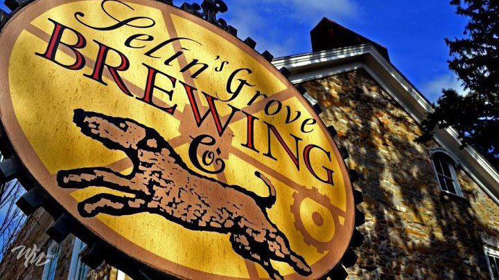 Selin's Grove Brewing (Selinsgrove, PA)