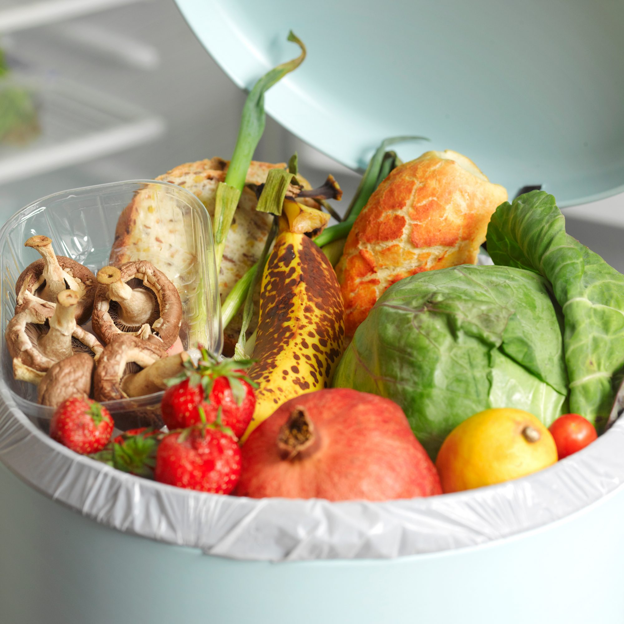 standard-for-counting-food-waste-fwx