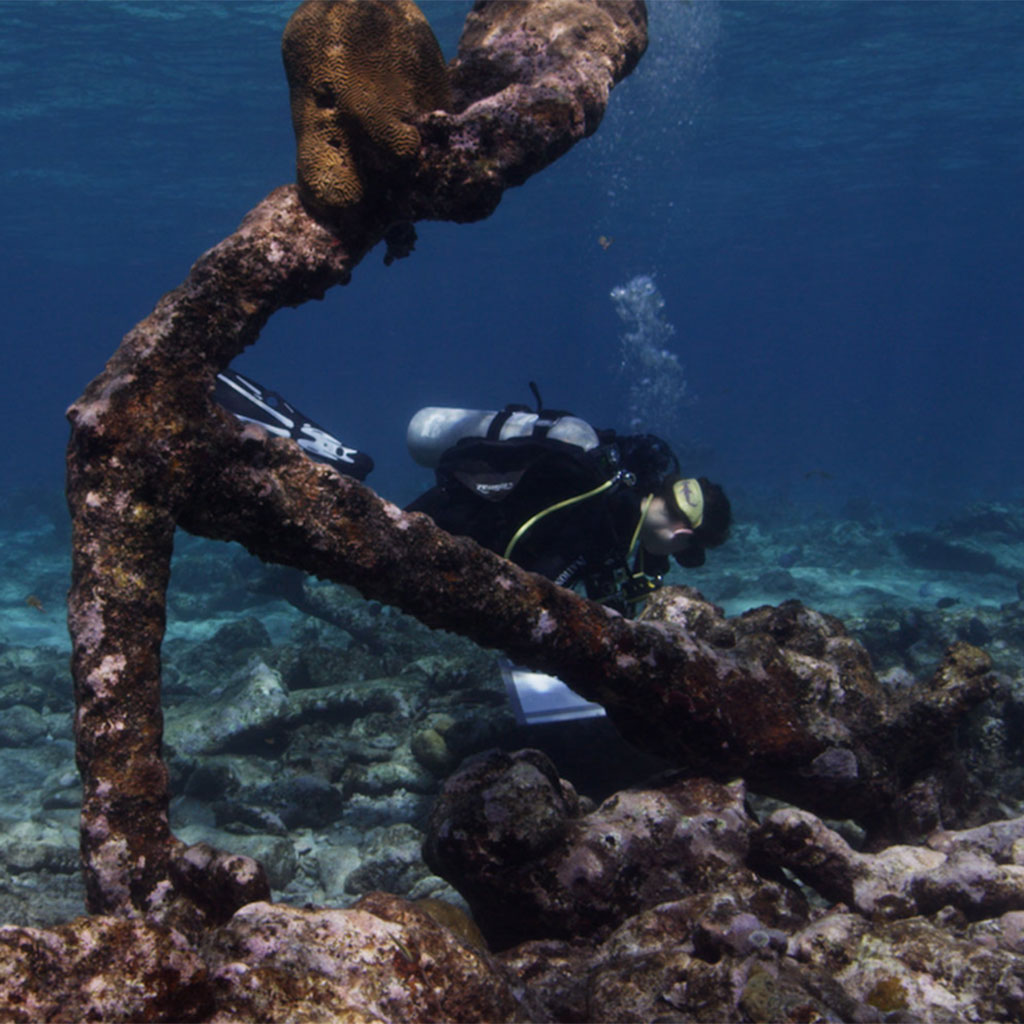 underwater-secret-nps-TL-partner-fwx