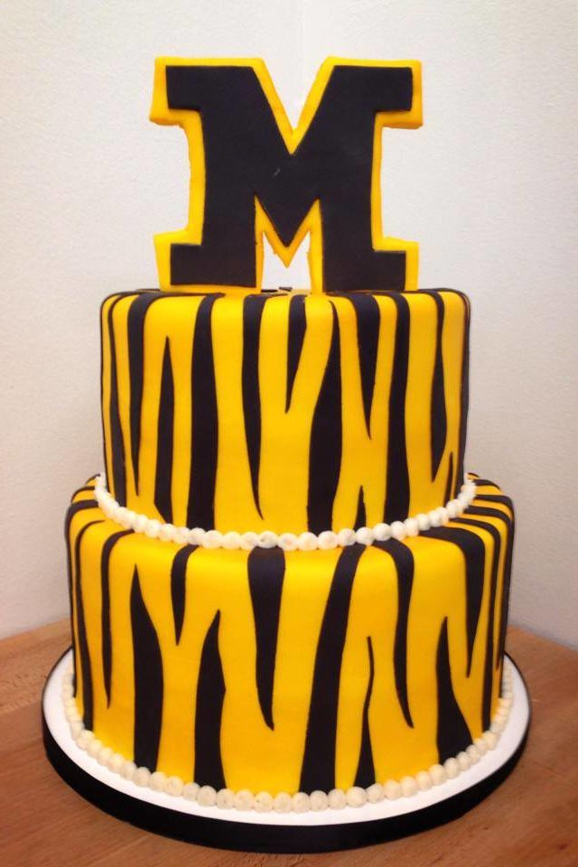 University of Missouri Grooms Cake