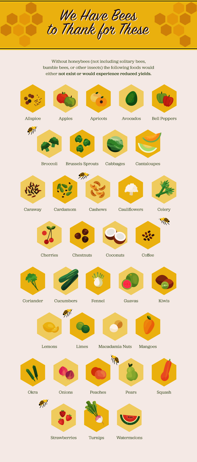 Foods That Bees Make