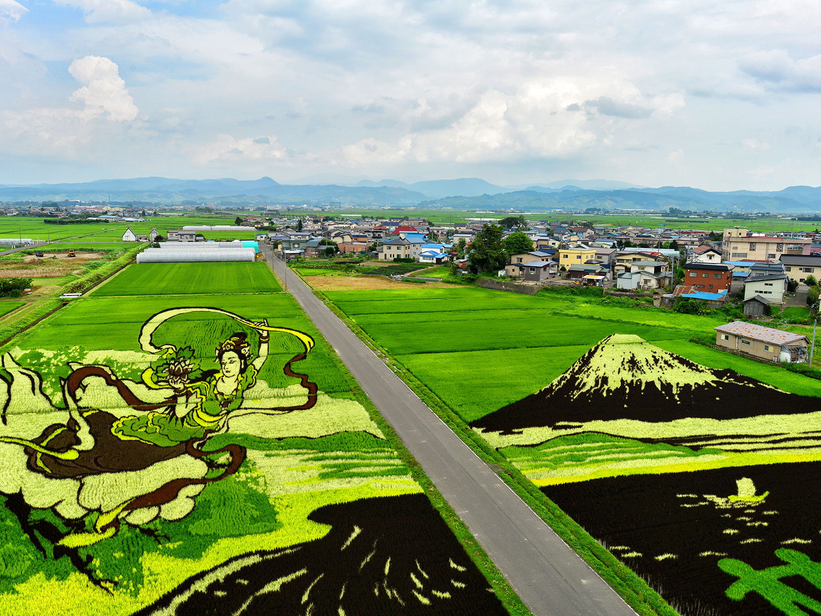 town in japan does rice patty art
