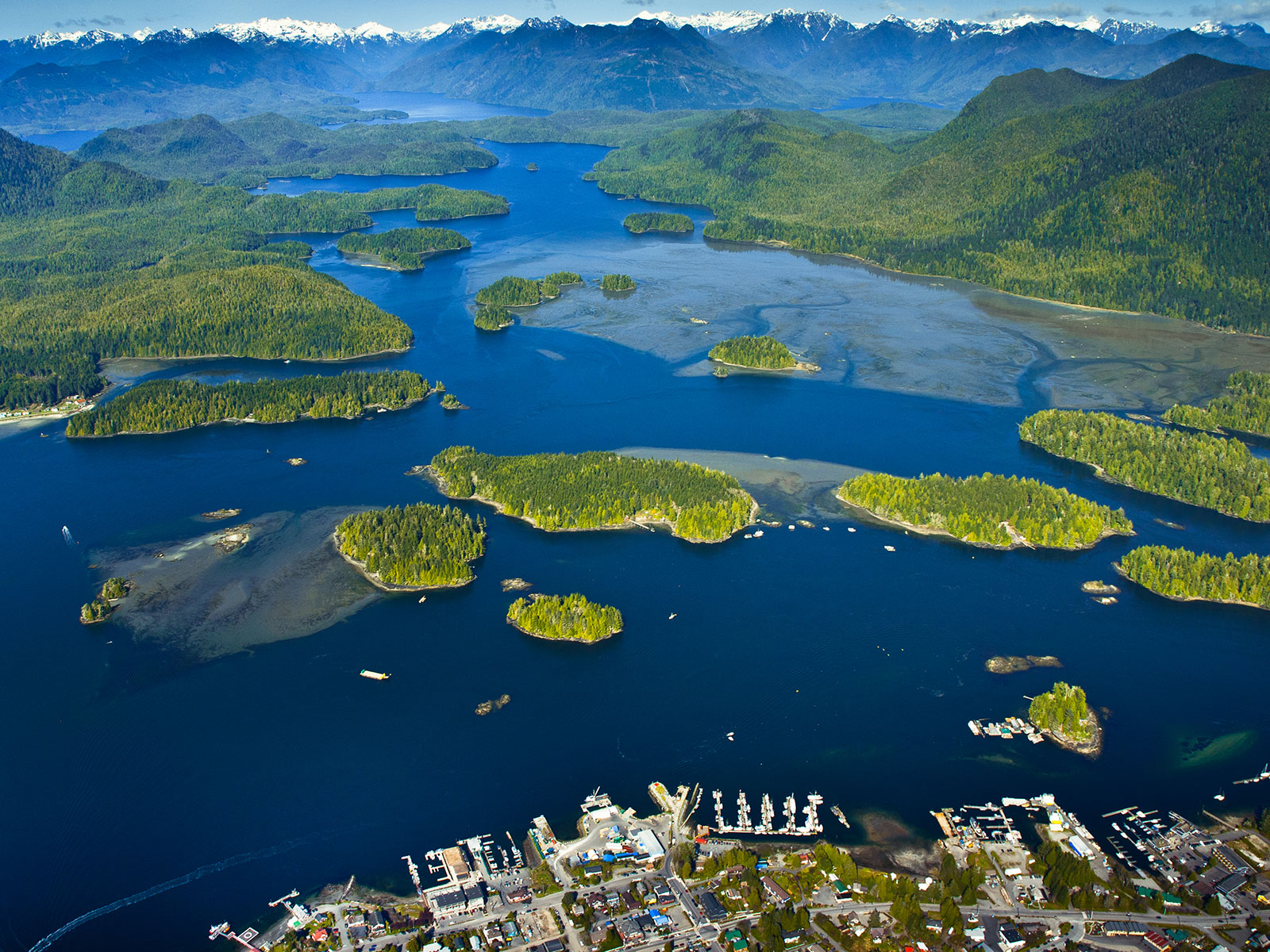 aerial view of tofino