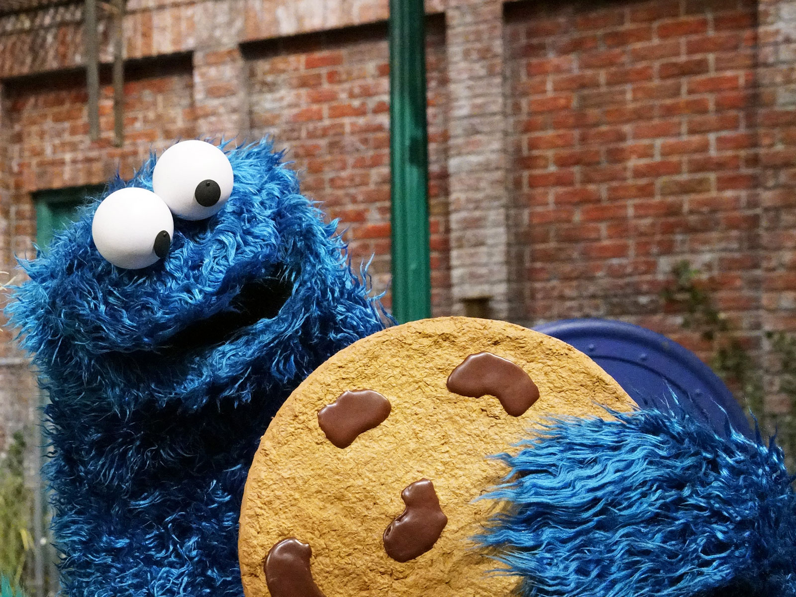 cookie monster the joy of cookies
