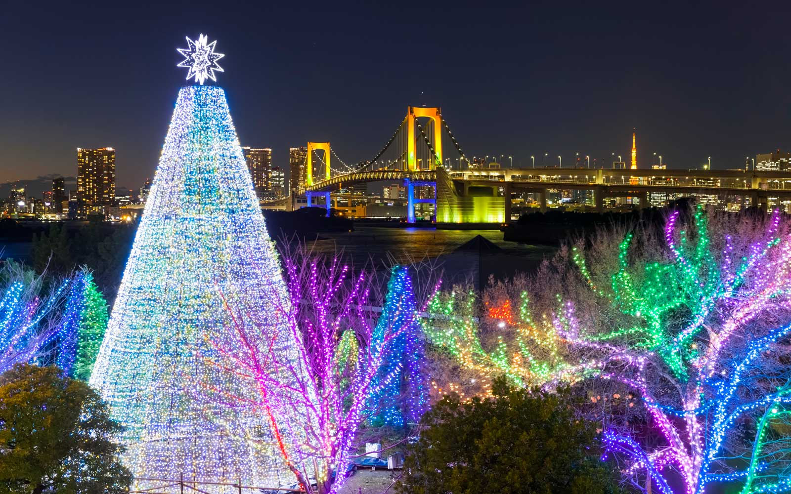 Rainbow Bridge Christmas display in Tokyo, Japan