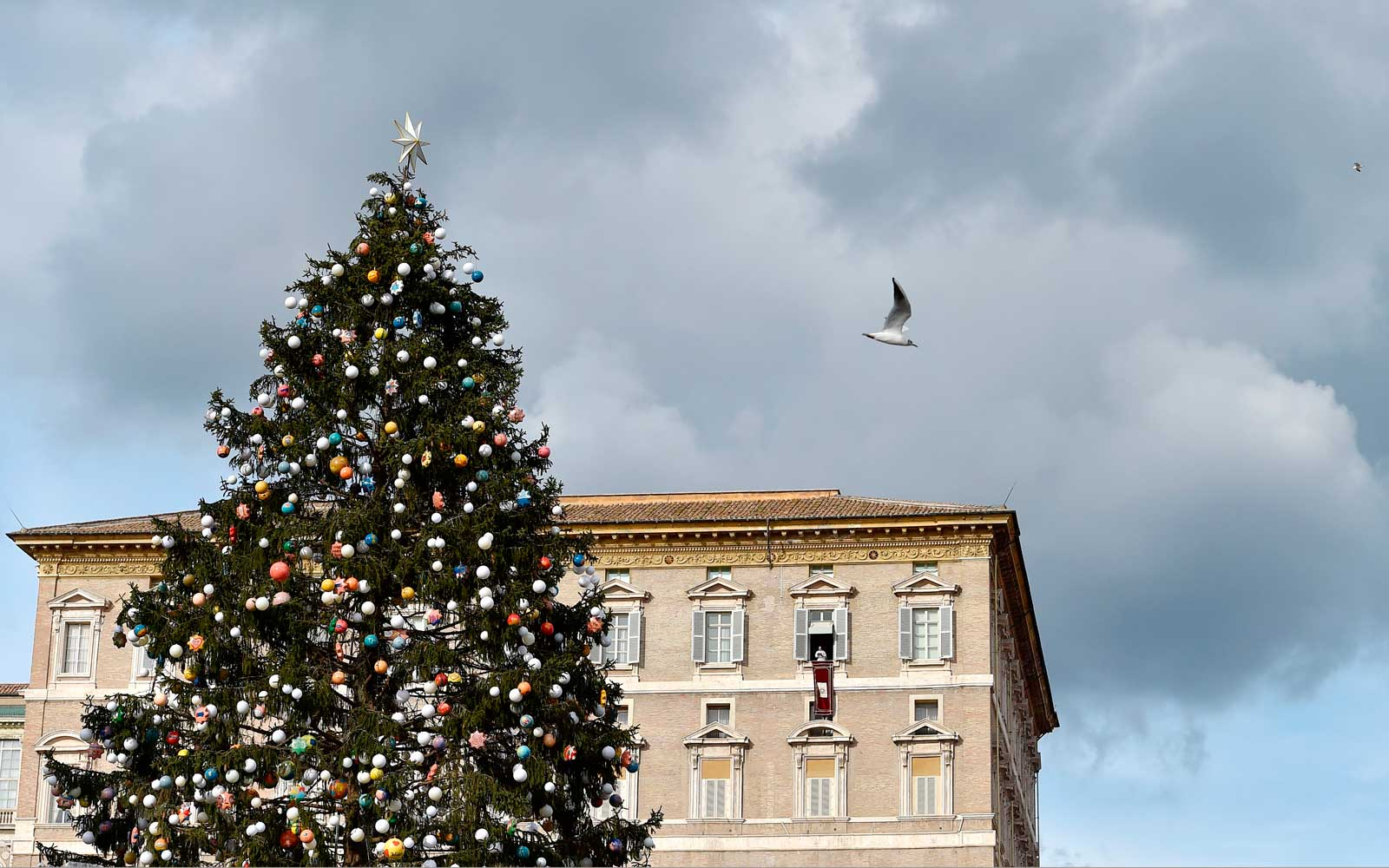 Vatican Christmas tree in St Peter's Square