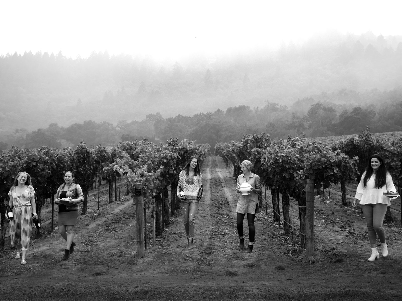 Women of Napa Valley Wine
