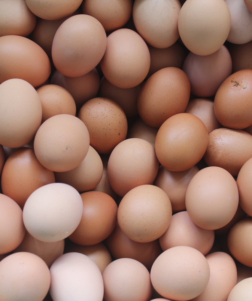 How Does Salmonella Get Into Eggs?