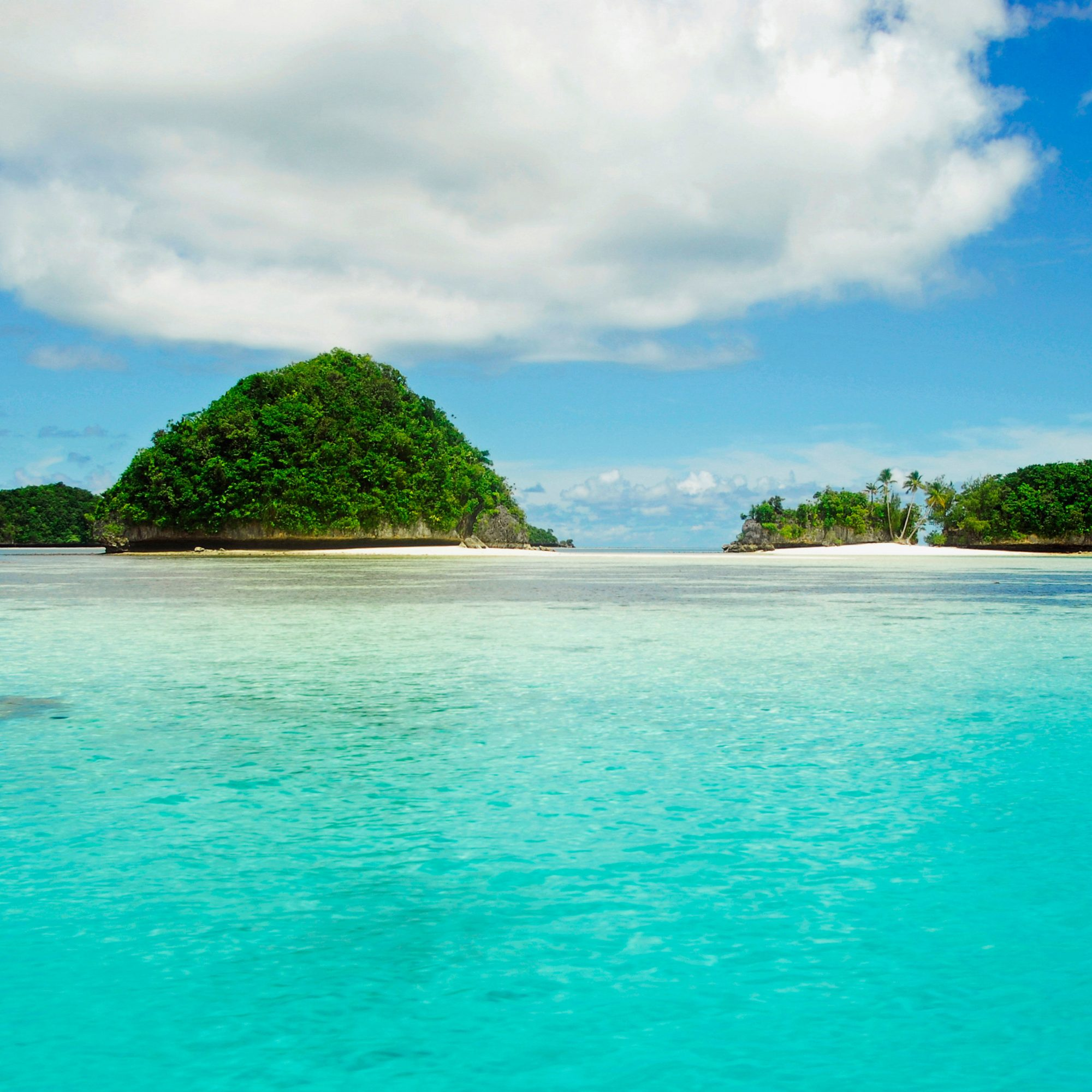 """Why to go: It's not called """"the underwater Serengeti"""" for nothing. With world-class dive sites, this 500-island archipelago in Micronesia is a lure for divers around the world, and winter is its perfect season (summers are rainy). Above the..."""