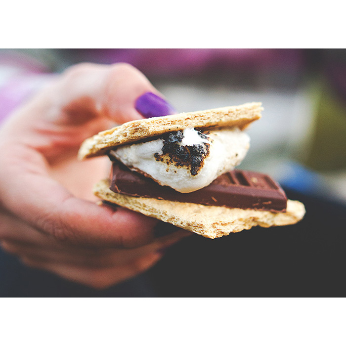 All S'mores Everything