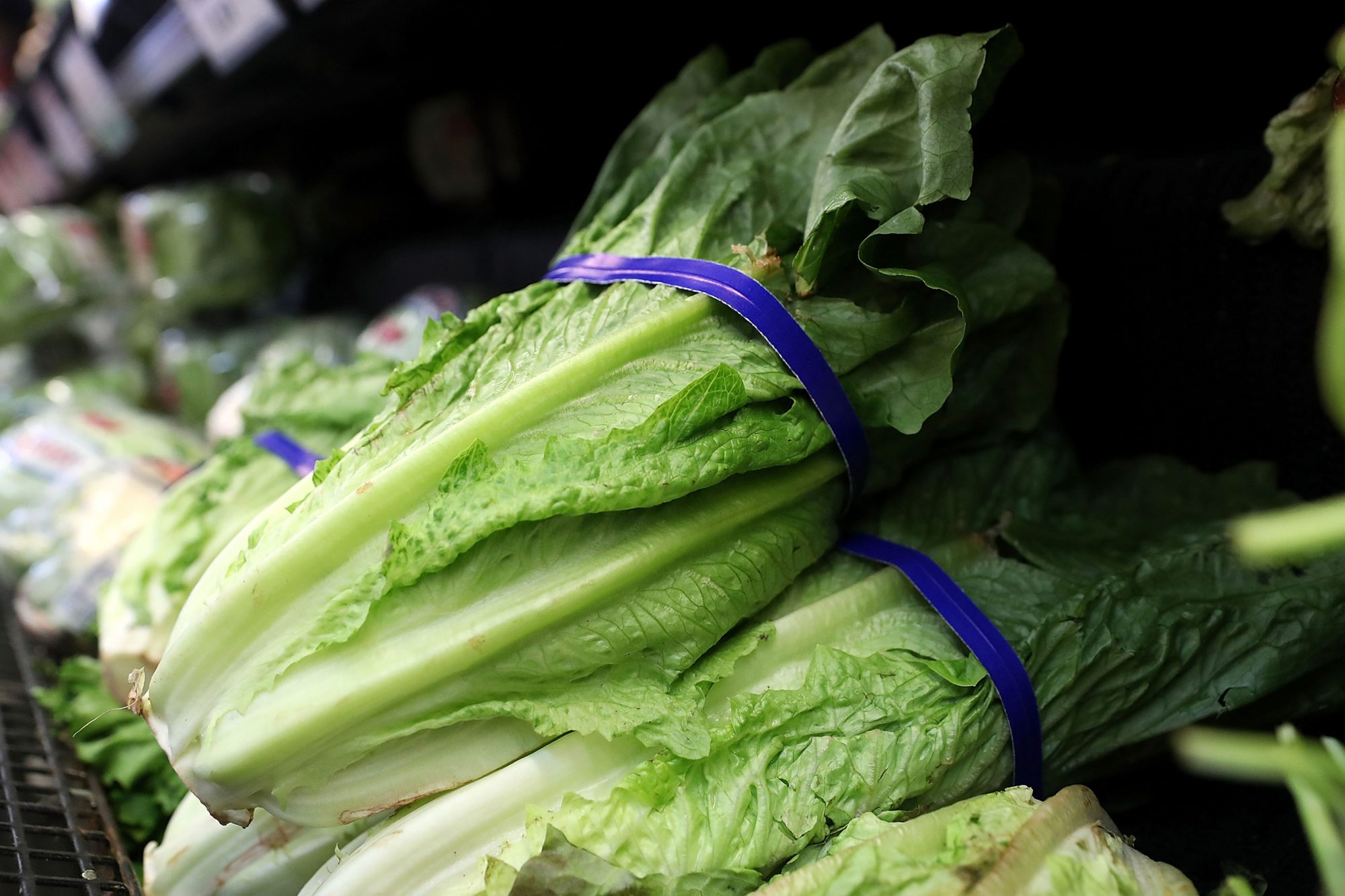 CDC Says to Throw Out All Romaine Lettuce Due to New E. coli Outbreak Ahead of Thanksgiving