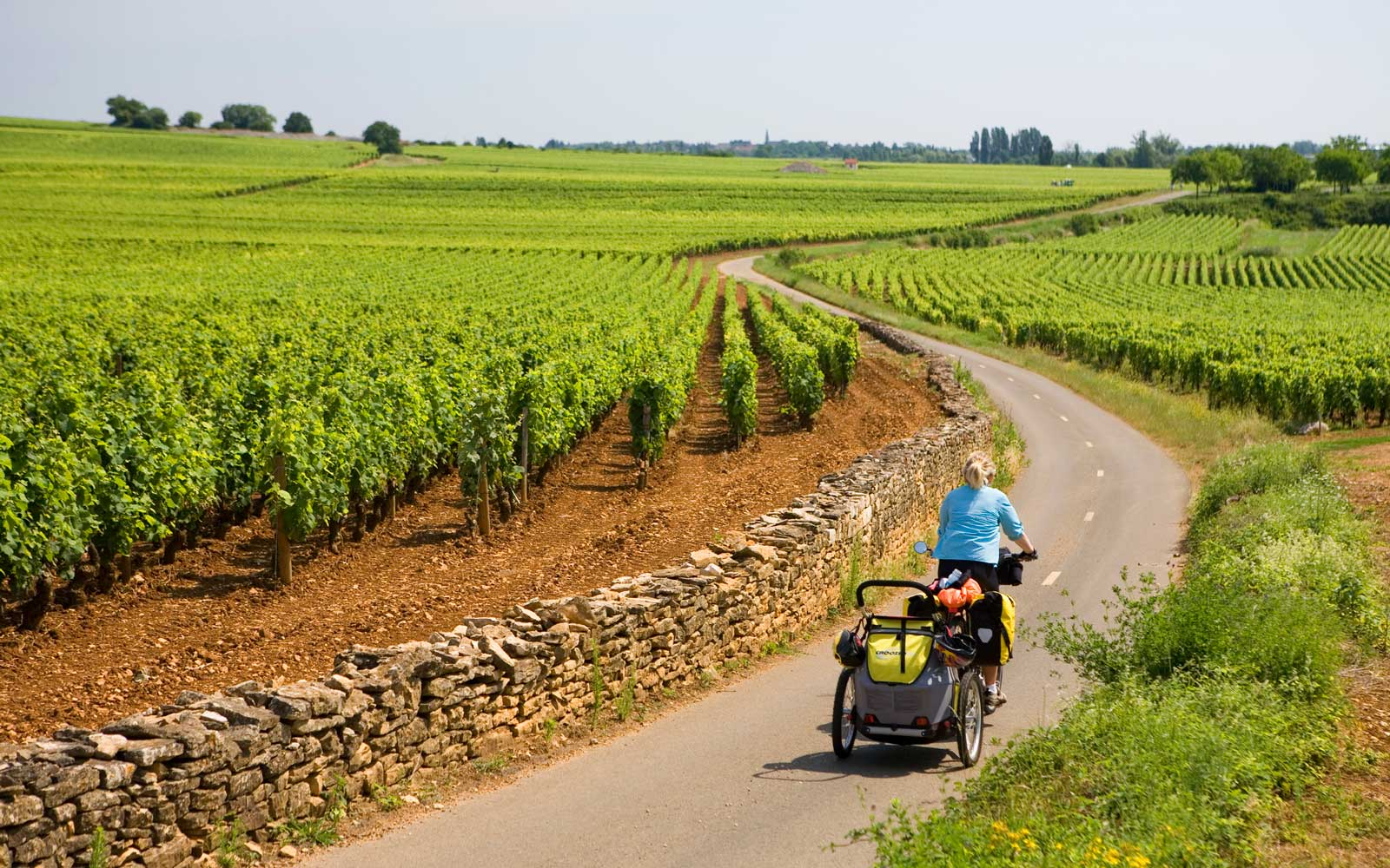 Bike Through French Wine Country