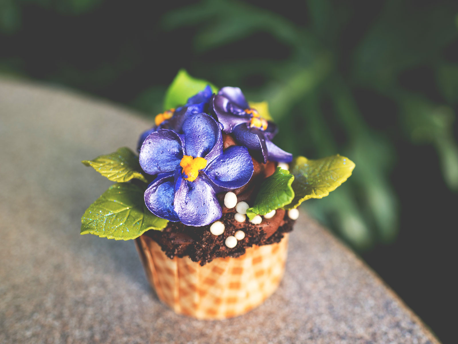 African Violet Cupcake