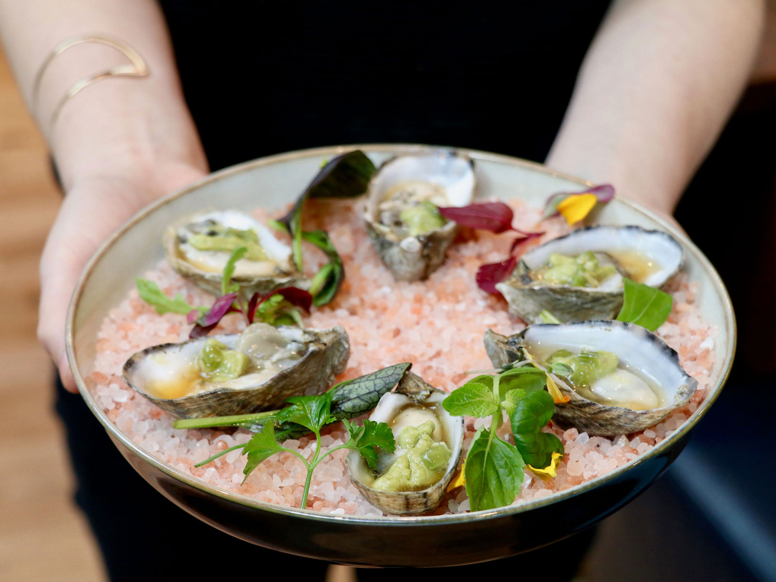 Oysters at Pikoh