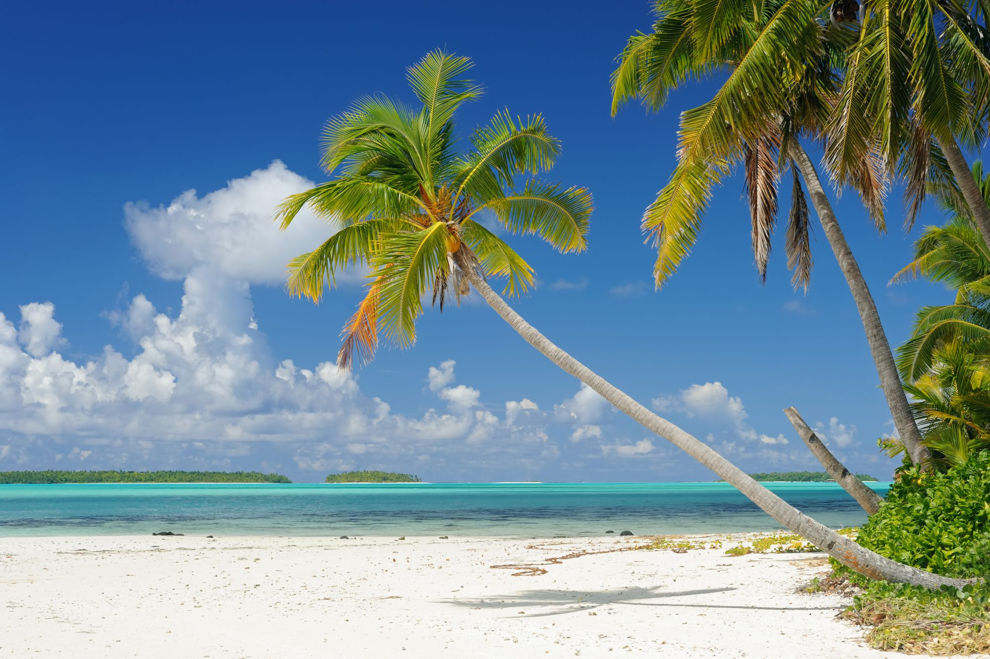 Cook-Island-Secluded-Beaches-FT.jpg