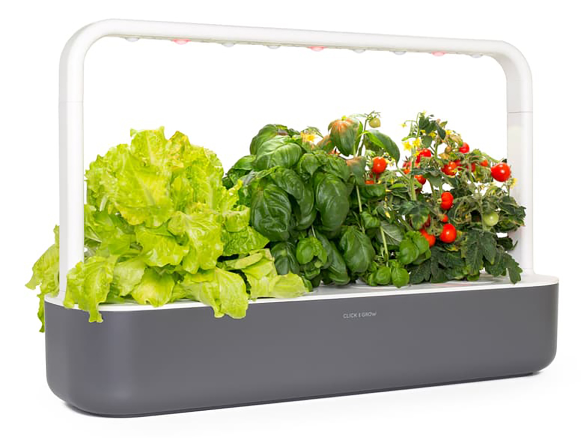 Click & Grow Smart Garden 9 Self Watering Indoor Garden