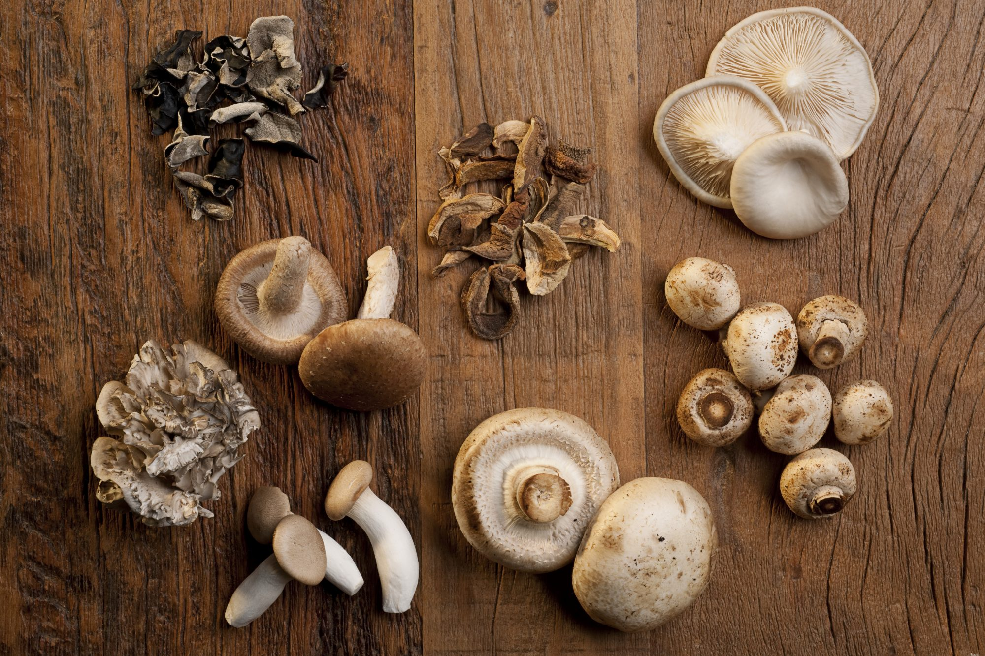 The 13 Most Common Types of Mushrooms—And What to Do with Them